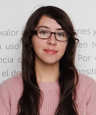 Angélica Silva Poblete